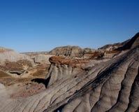 Αλμπέρτα Badlands και γεωλογικοί σχηματισμοί Στοκ Εικόνες