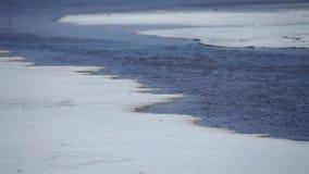 Αλμυρή λίμνη απόθεμα βίντεο
