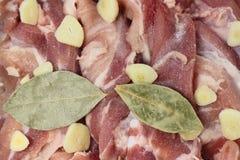 Αλμυρό μαριναρισμένο χοιρινό κρέας Στοκ Εικόνα