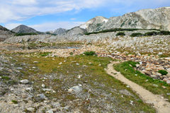 Αλπικό ίχνος στα βουνά τόξων ιατρικής του Ουαϊόμινγκ Στοκ Φωτογραφία
