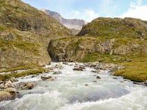 Αλπικό ρεύμα νερού βουνών της Ελβετίας Στοκ φωτογραφία με δικαίωμα ελεύθερης χρήσης