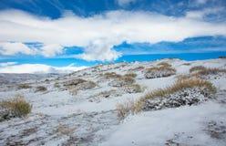 αλπικό tundra στοκ εικόνα