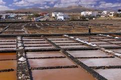 Αλυκές στο Fuerteventura στοκ εικόνα με δικαίωμα ελεύθερης χρήσης