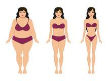 Αδυνάτισμα γυναικών, παχύ λεπτό κορίτσι, θηλυκή απώλεια βάρους διανυσματική απεικόνιση