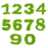 Αλφάβητο αριθμός μηδέν έως εννέα Στοκ Εικόνες