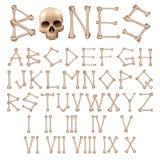 Αλφάβητο κόκκαλων  Στοκ Εικόνες