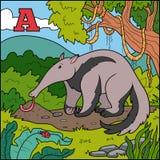 Αλφάβητο χρώματος για τα παιδιά: γράμμα Α (anteater) διανυσματική απεικόνιση