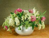 Αλφάλφα, meadowsweet 1 ζωή ακόμα Ανθοδέσμη των λουλουδιών λιβαδιών Στοκ Φωτογραφία