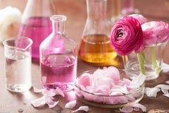 Αλχημεία και aromatherapy σύνολο με τα λουλούδια και τις φιάλες βατραχίων Στοκ φωτογραφία με δικαίωμα ελεύθερης χρήσης