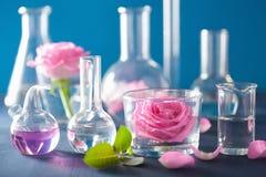Αλχημεία και aromatherapy σύνολο με τα ροδαλά λουλούδια και τα χημικά flas Στοκ Εικόνα