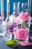 Αλχημεία και aromatherapy σύνολο με τα ροδαλά λουλούδια και τα χημικά flas Στοκ Φωτογραφία