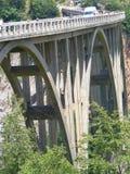 5$α  urÄ ` eviÄ ‡ μια γέφυρα της Tara Στοκ εικόνες με δικαίωμα ελεύθερης χρήσης