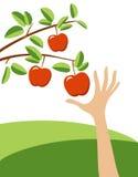 Βάζοντας στον πειρασμό κόκκινο μήλο διανυσματική απεικόνιση