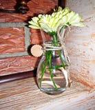 Βάζο γυαλιού με τα άσπρα λουλούδια, που δένονται με μια σειρά, που στέκεται σε έναν πίνακα σε έναν καφέ στο υπόβαθρο ενός παραθύρ στοκ εικόνα