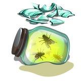 Βάζο γυαλιού με τις μύγες που βρίσκονται στην άμμο Τεμάχια του σπασμένου γυαλιού που απομονώνεται στο άσπρο υπόβαθρο Διανυσματική ελεύθερη απεικόνιση δικαιώματος