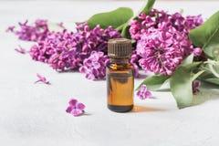 Βάζο γυαλιού με το ροδαλό νερό και ιώδη λουλούδια, διάστημα αντιγράφων για το κείμενο Έννοια για τη SPA και aromatherapy κλείστε  Στοκ φωτογραφία με δικαίωμα ελεύθερης χρήσης