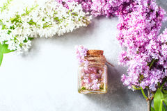 Βάζο γυαλιού με το πετρέλαιο αρώματος και με τα ιώδη λουλούδια για τη SPA και aromatherapy Έννοια SPA Στοκ Εικόνες