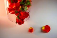 Βάζο γυαλιού που γεμίζουν με τα κόκκινα ροδαλά πέταλα aromatherapy έννοια Στοκ Φωτογραφίες