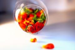 Βάζο γυαλιού που γεμίζουν με τα κόκκινα ροδαλά πέταλα aromatherapy έννοια Στοκ εικόνες με δικαίωμα ελεύθερης χρήσης