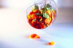 Βάζο γυαλιού που γεμίζουν με τα κόκκινα ροδαλά πέταλα aromatherapy έννοια Στοκ Εικόνα