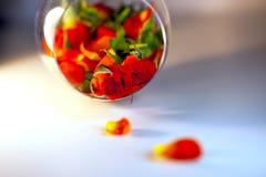 Βάζο γυαλιού που γεμίζουν με τα κόκκινα ροδαλά πέταλα aromatherapy έννοια Στοκ φωτογραφίες με δικαίωμα ελεύθερης χρήσης