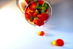 Βάζο γυαλιού που γεμίζουν με τα κόκκινα ροδαλά πέταλα aromatherapy έννοια Στοκ Φωτογραφία