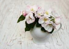 Βάζο με τα άνθη της Apple Στοκ Εικόνες