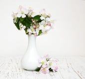 Βάζο με τα άνθη της Apple Στοκ εικόνες με δικαίωμα ελεύθερης χρήσης