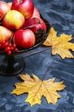 Βάζο με τα μήλα φθινοπώρου Στοκ Φωτογραφία