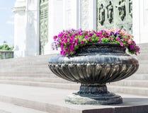 Βάζο οδών με τα όμορφα λουλούδια Στοκ Φωτογραφίες