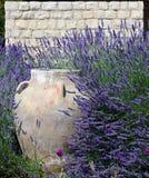 Βάζο, πέτρινος, και Lavender Στοκ φωτογραφία με δικαίωμα ελεύθερης χρήσης