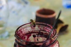 Βάζο της μαρμελάδας με τη μέλισσα Στοκ Φωτογραφίες