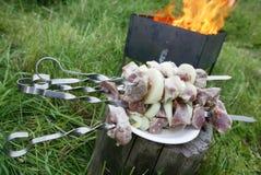 βάλτε φωτιά shashlik Στοκ Εικόνες