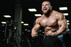 Βάναυσα ισχυρά αθλητικά άτομα bodybuilder που αντλούν επάνω τους μυς με το δ Στοκ Εικόνα