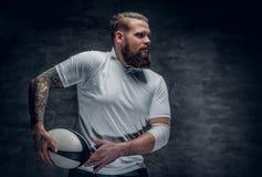 Βάναυσος γενειοφόρος φορέας ράγκμπι στη δράση στοκ φωτογραφία με δικαίωμα ελεύθερης χρήσης