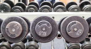 Βάρη αλτήρων εξοπλισμού άσκησης ικανότητας Στοκ εικόνα με δικαίωμα ελεύθερης χρήσης