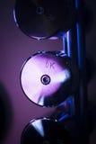 Βάρη Dumbell στη γυμναστική ικανότητας Στοκ φωτογραφία με δικαίωμα ελεύθερης χρήσης