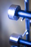 Βάρη Dumbell στη γυμναστική ικανότητας Στοκ Εικόνες