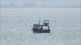 Βάρκα και seagulls ρυμουλκών αλιείας αλιευτικών πλοιαρίων φιλμ μικρού μήκους