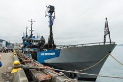 Βάρκα κραχτών βαριδιών από τον ποιμένα θάλασσας Στοκ φωτογραφία με δικαίωμα ελεύθερης χρήσης