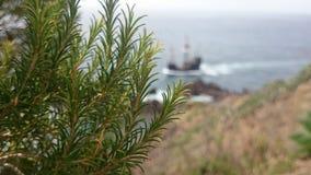 Βάρκα πειρατών Στοκ Φωτογραφία