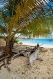 Βάρκα Abadoned στην αμμώδη παραλία στον κόλπο Μαδαγασκάρη Antsiranana Στοκ Εικόνα