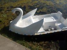 Βάρκα Shikara στη λίμνη Manasbal στο Κασμίρ Στοκ εικόνα με δικαίωμα ελεύθερης χρήσης