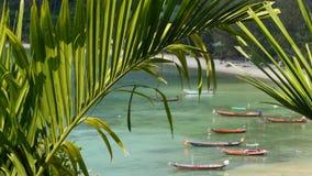 Βάρκες κοντά στην ακτή του νησιού Παραδοσιακά ζωηρόχρωμα αλιευτικά σκάφη που επιπλέουν στο ήρεμο μπλε νερό κοντά στην άσπρη ακτή  απόθεμα βίντεο