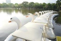 Βάρκες πενταλιών παπιών Στοκ φωτογραφία με δικαίωμα ελεύθερης χρήσης