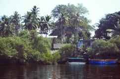 βάρκες που αλιεύουν την αποβάθρα φοινικών ζουγκλών της Ινδίας goa Στοκ Φωτογραφία