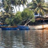 βάρκες που αλιεύουν την αποβάθρα φοινικών ζουγκλών της Ινδίας goa Στοκ φωτογραφία με δικαίωμα ελεύθερης χρήσης