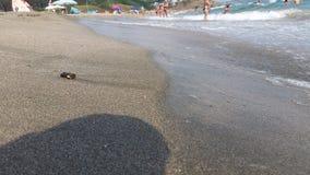 Βάρκες σε Μαύρη Θάλασσα στη Αγαθούπολη στοκ εικόνες