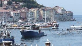 Βάρκες στην ακτή Rovinj απόθεμα βίντεο