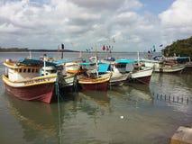 Βάρκες στον ποταμό, Βραζιλία Στοκ Φωτογραφία